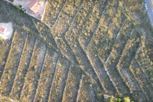 ACG Drone_fotogrametría con drones