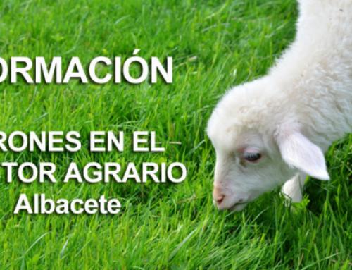 Los drones en el sector Agrario – Formación impartida en Albacete